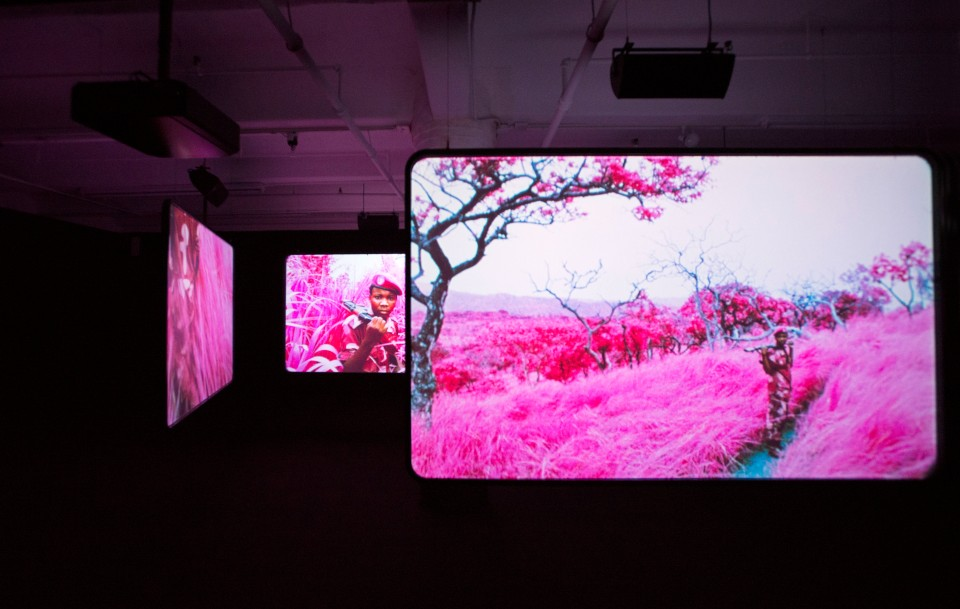 Installation view, The Enclave, 2012–2013. 16 mm infrared film transferred to HD video. Produced in eastern Democratic Republic of Congo. Courtesy of Jack Shainman Gallery, New York.